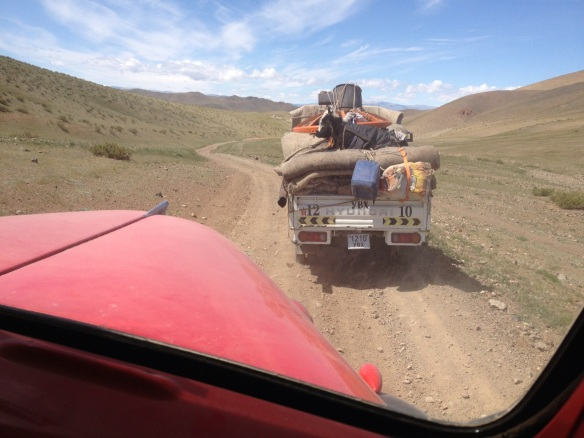 A Mongolian cow hitches a ride